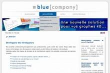 Le site de Bluecompany